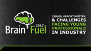 Brain Fuel: Issues, Opportunities, and Challenges Facing Young Technology Professionals in Industry - 2017